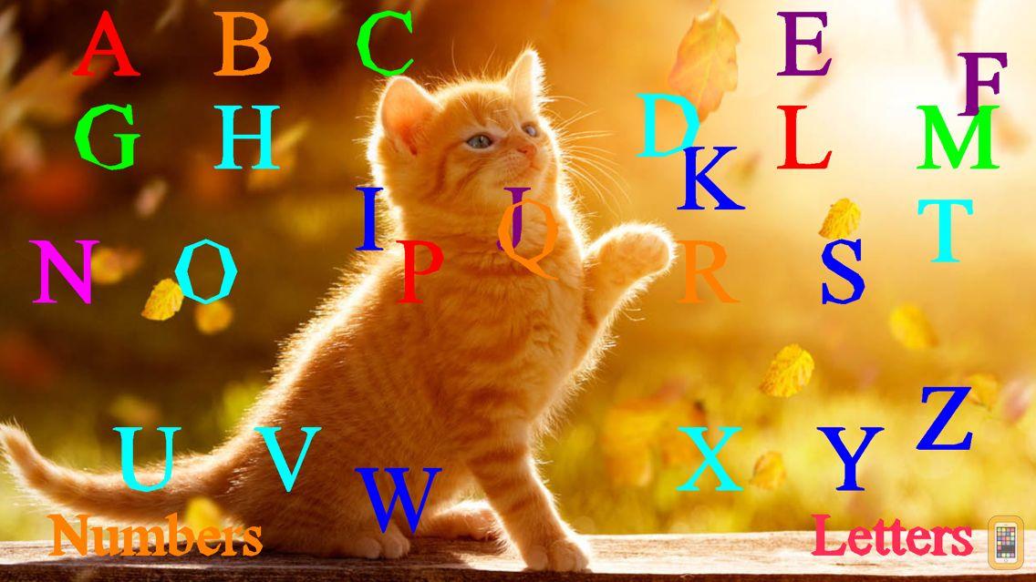 Screenshot - Wild Cats Sounds