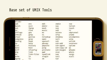 Screenshot - Blink Shell: Mosh & SSH Client