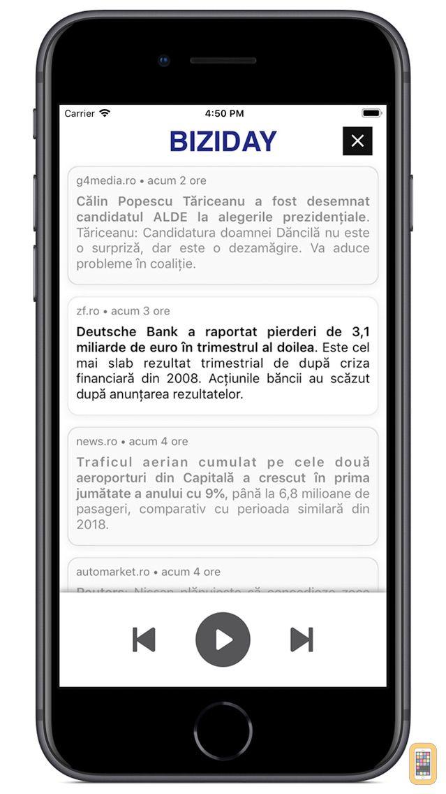 Screenshot - Biziday