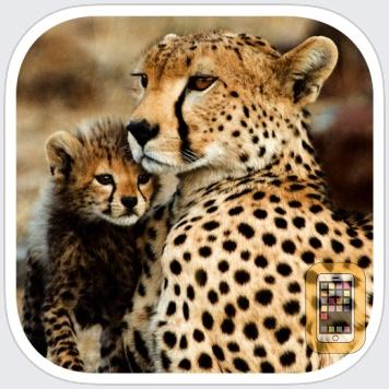 Stuarts' African Mammals by mydigitalearth.com (Universal)