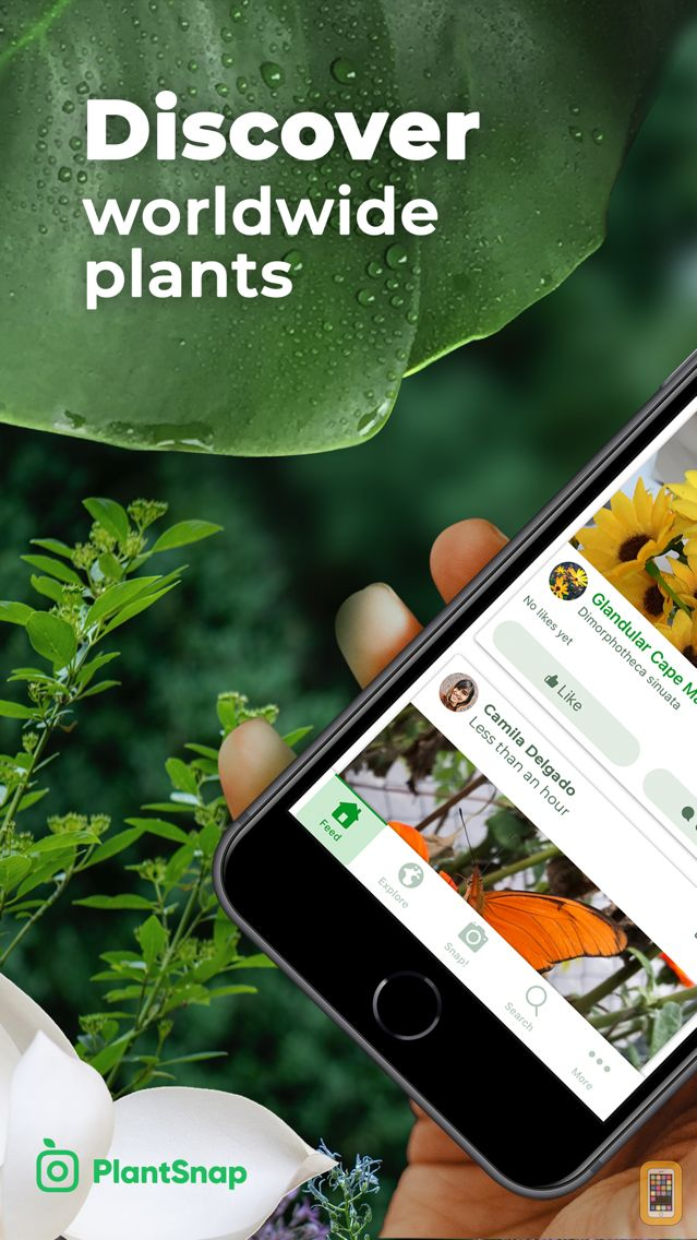 Screenshot - PlantSnap Plant Identification