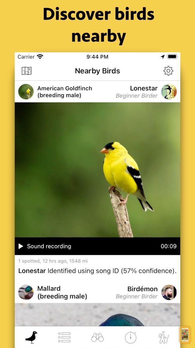 Screenshot - Smart Bird ID