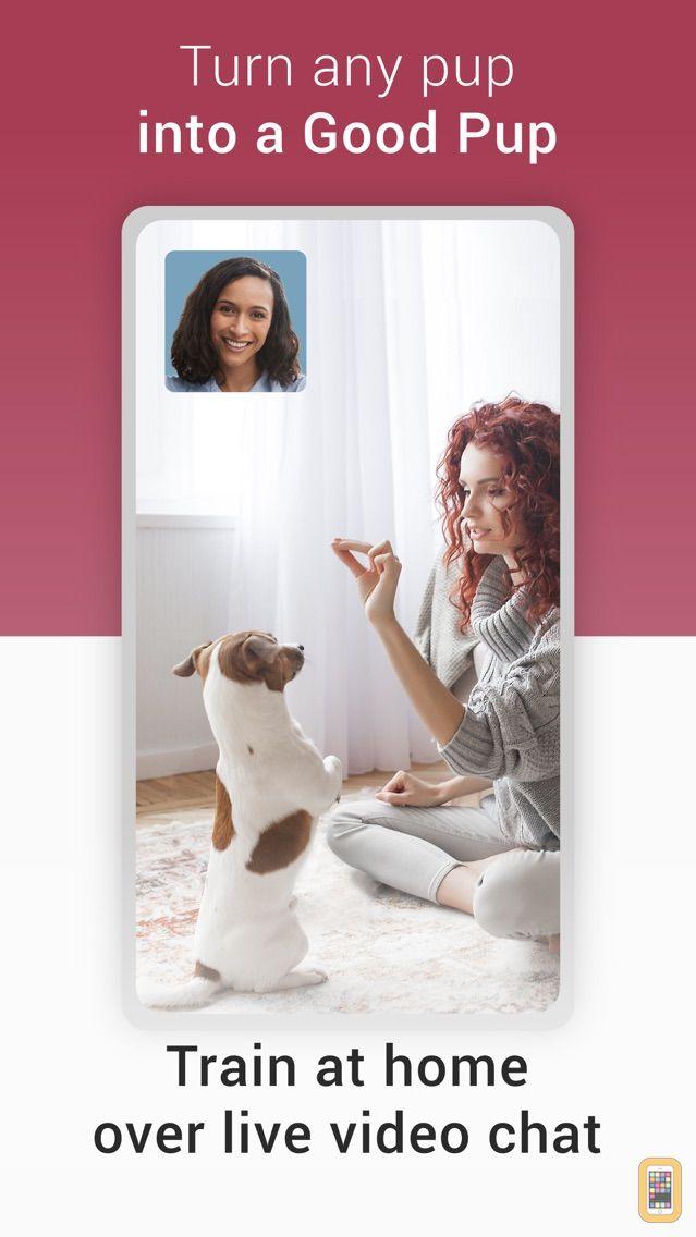 Screenshot - GoodPup: Dog Training at Home