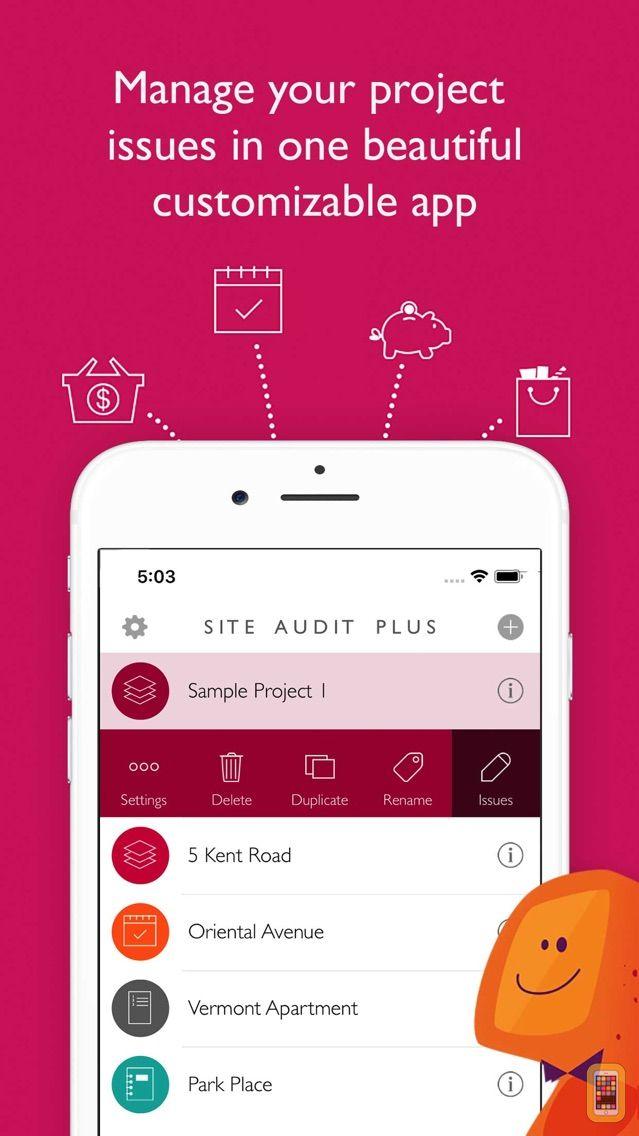 Screenshot - Site Audit Plus