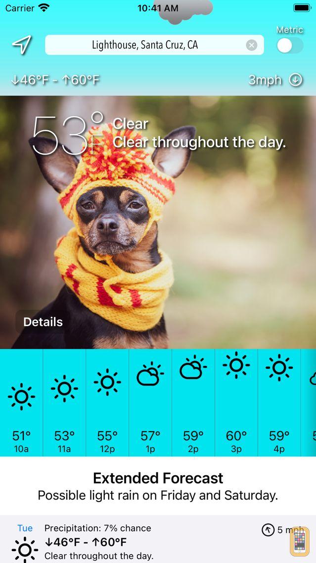 Screenshot - Sundoggy