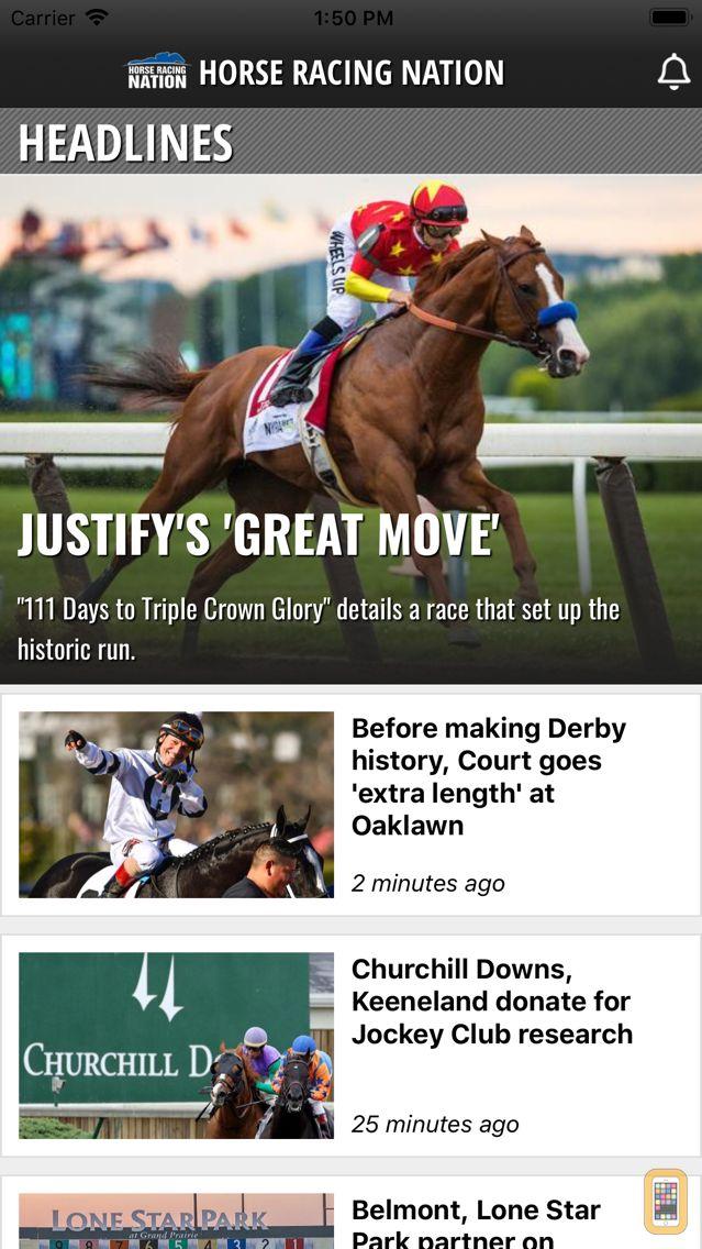 Screenshot - Horse Racing Nation