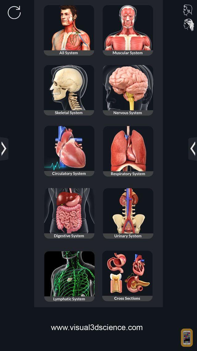 Screenshot - Human Anatomy