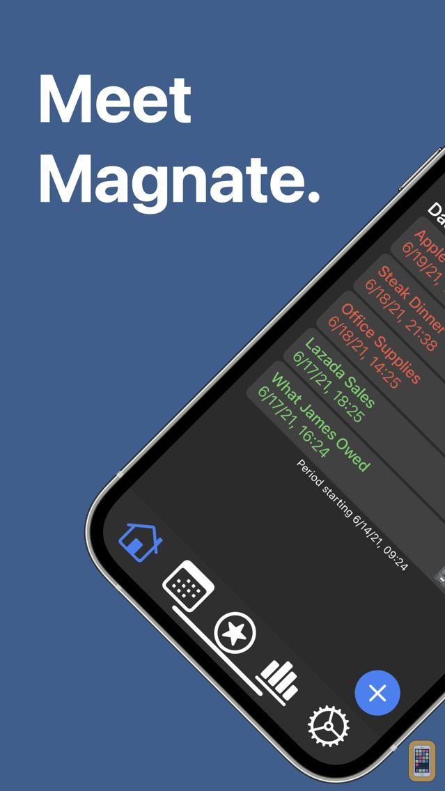 Screenshot - Magnate - Budget Tracker