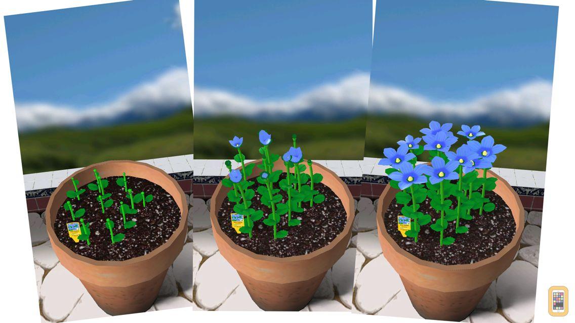 Screenshot - Flower Garden - Grow Flowers and Send Bouquets