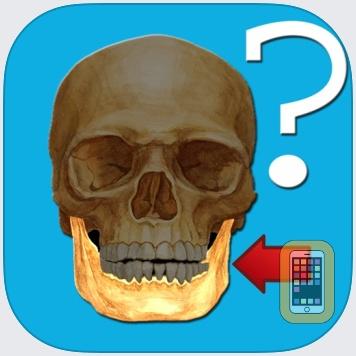 Anatomy Quiz by Alexander Mokrushin (Universal)
