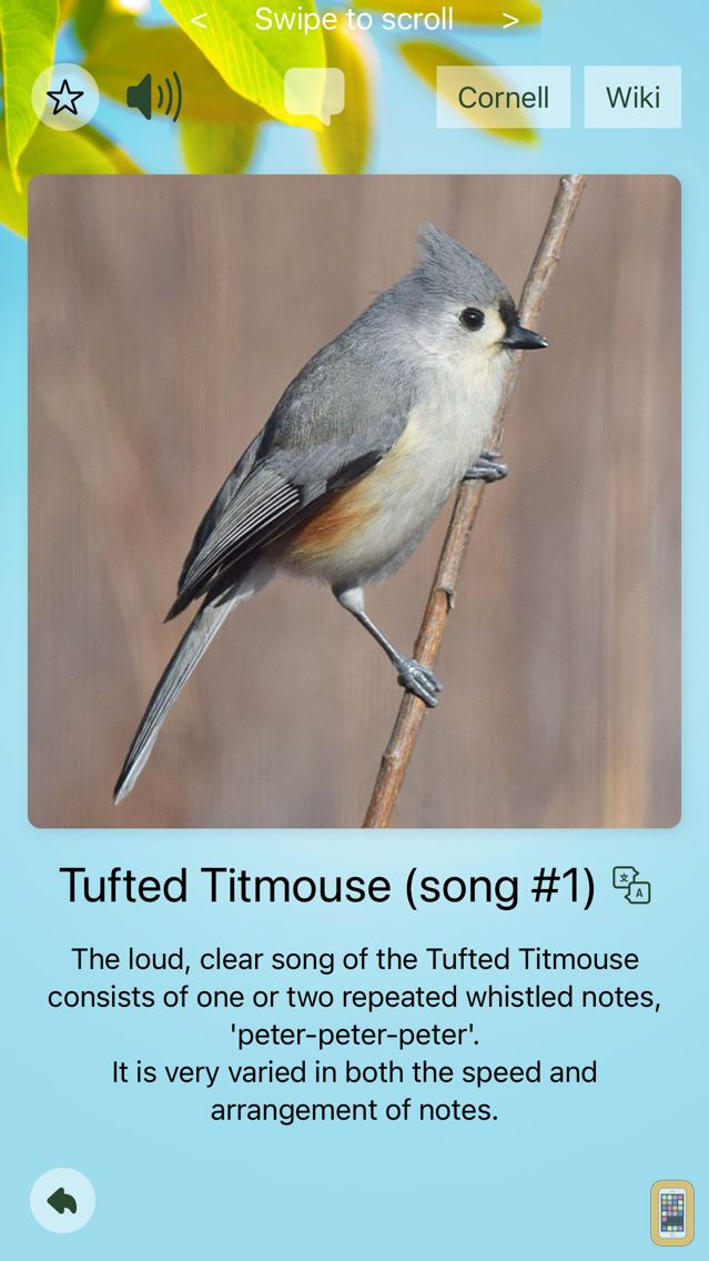 Screenshot - Chirp! Bird Songs & Calls USA