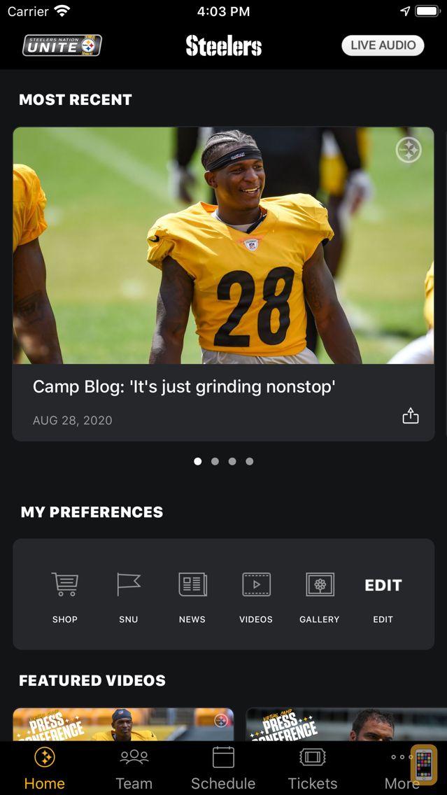 Screenshot - Pittsburgh Steelers