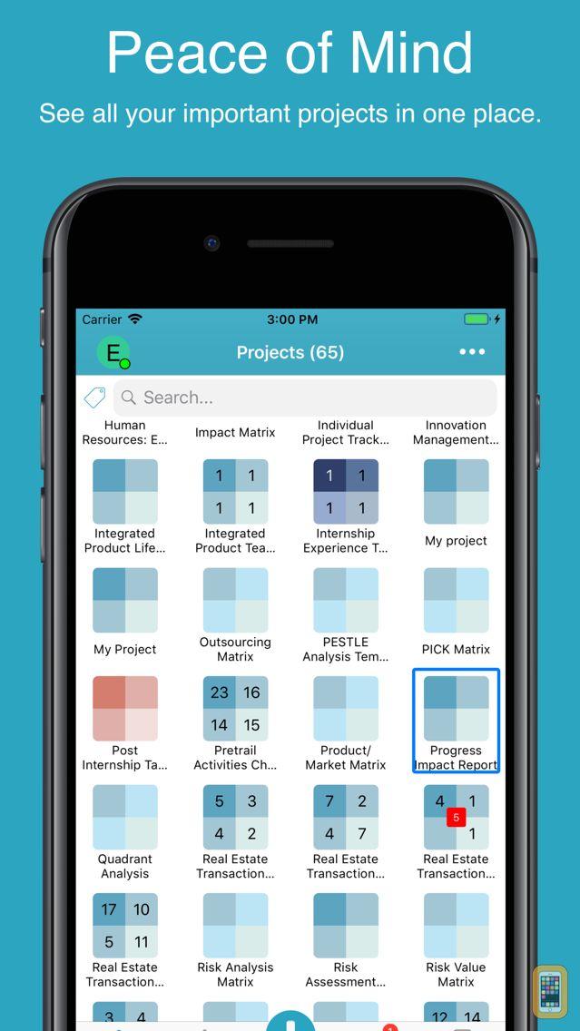 Screenshot - Priority Matrix