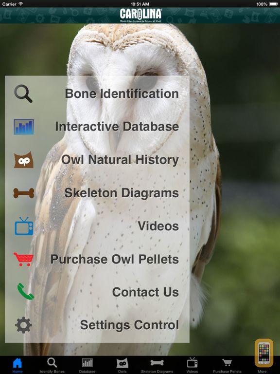 Screenshot - Owl Pellet Activities HD