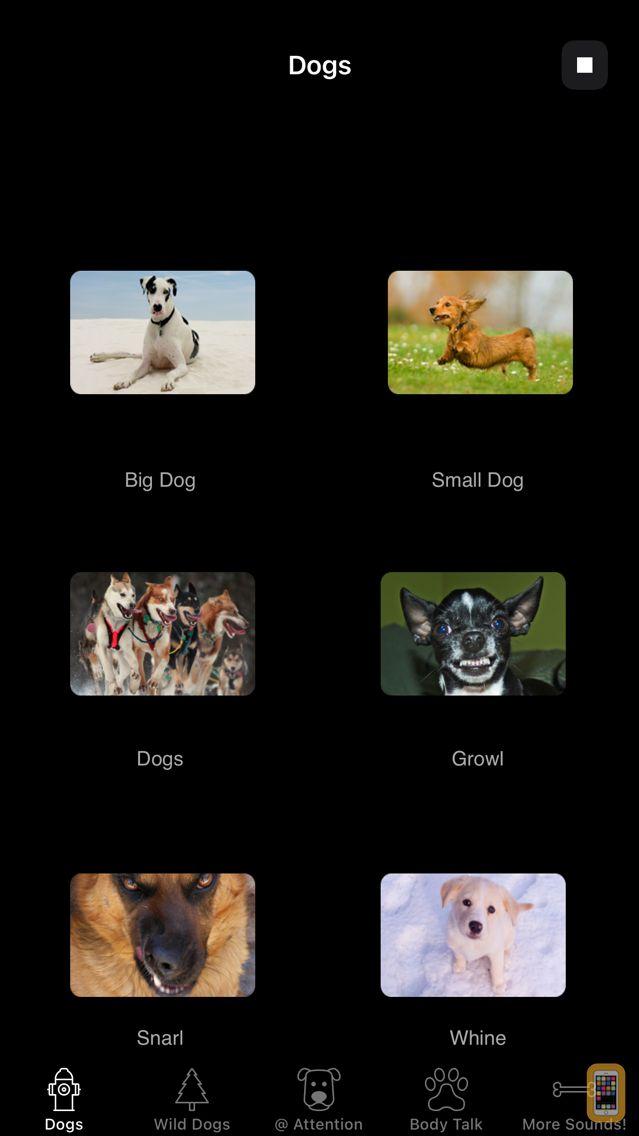 Screenshot - Dog Sounds & Body Talk