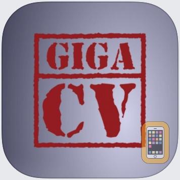 Your best resume with giga-cv by kodaski.fr (Universal)