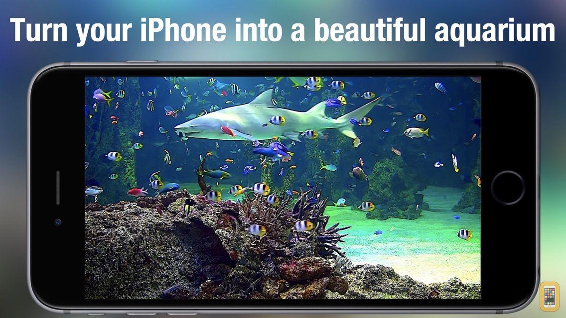 Screenshot - Aquarium Live HD +
