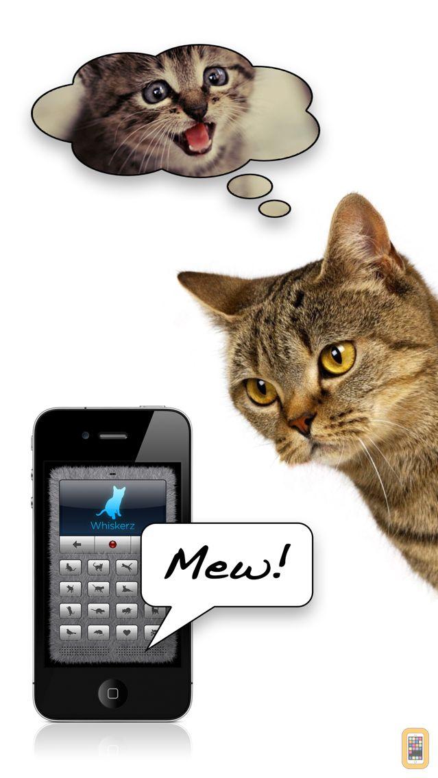 Screenshot - Human-to-Cat Translator Deluxe