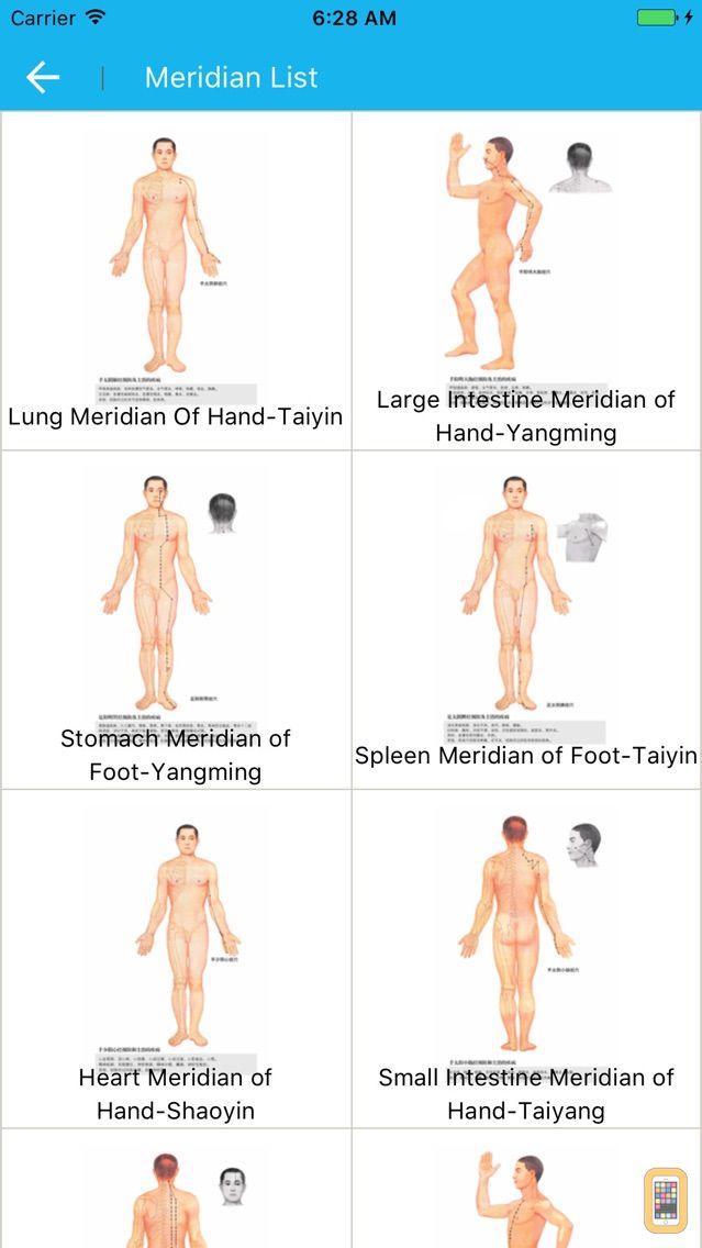 Screenshot - Meridian Acupoint Handbook HD