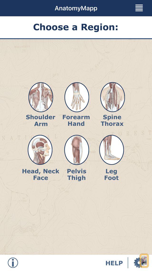 Screenshot - AnatomyMapp