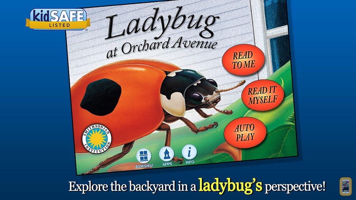 Screenshot - Ladybug at Orchard Avenue - Smithsonian's Backyard