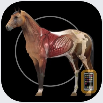 Horse Anatomy: Equine 3D by Real Bodywork (Universal)