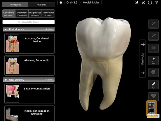 Screenshot - Dental Patient Education