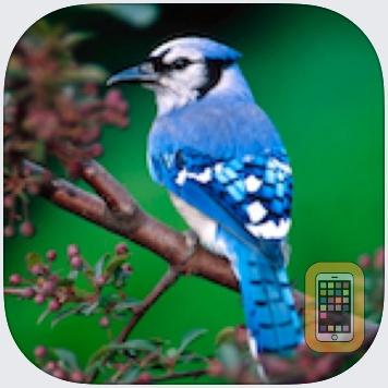 Birds Songs App, ornithology by Juan Jose Pons Florit (Universal)