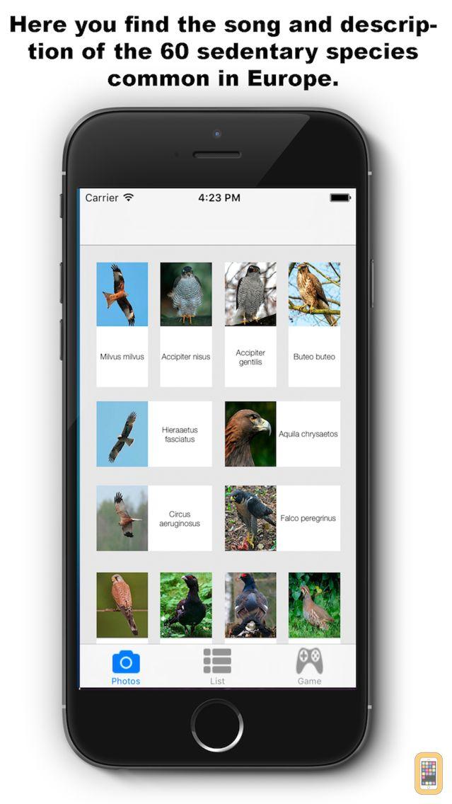 Screenshot - Birds Songs App, ornithology