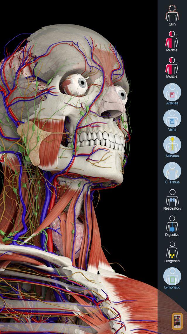 Screenshot - Essential Anatomy 5