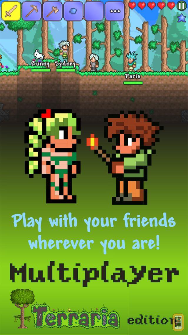Screenshot - Multiplayer Terraria edition