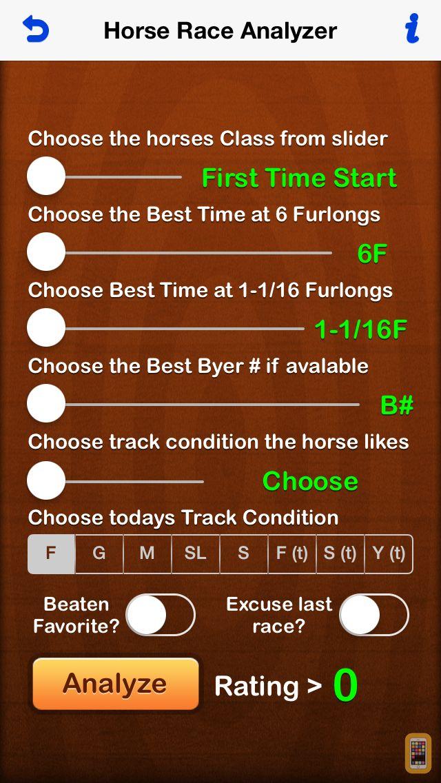 Screenshot - Horse Analyzer