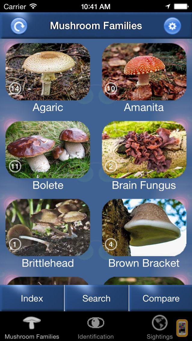 Screenshot - Mushroom Id North America