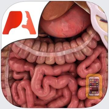 High School Anatomy by Pocket Anatomy (Universal)