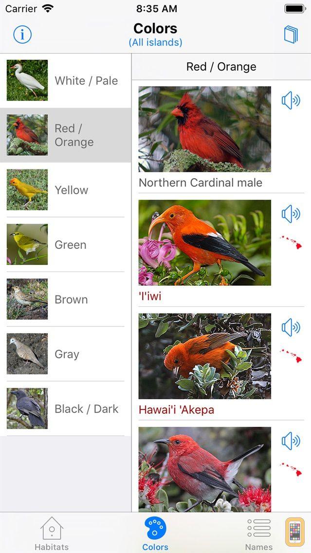 Screenshot - Bird ID Hawaii