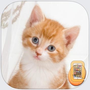 Jigsaw Wonder Kittens Puzzles for Kids by Eggroll Games LLC (Universal)